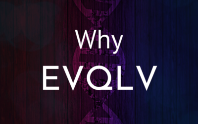 Why EVQLV? The Interesting Story Behind Our Name