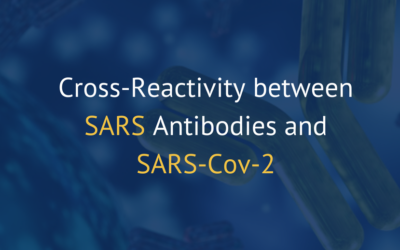Cross-Reactivity between SARS Antibodies and SARS-CoV-2
